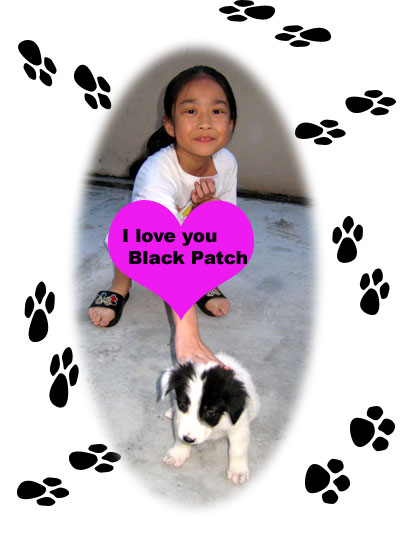 bella-and-black-patch